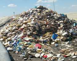 Studies: Waste Management