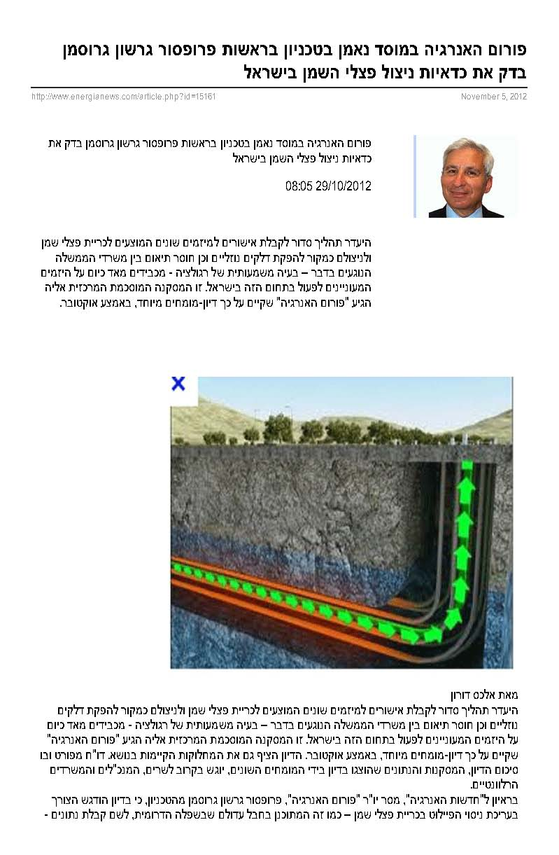 The energy forum at S. Neaman Institute at the Technion led by Prof. Gershon Grossman examined the profitability of oil shale utilization in Israel